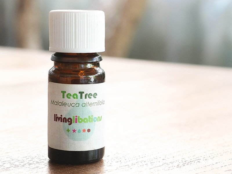 How to use tea tree oil for acne, blemishes, pimples, and as a spot treatment. Featuring Living Libations Tea Tree Essential Oil.