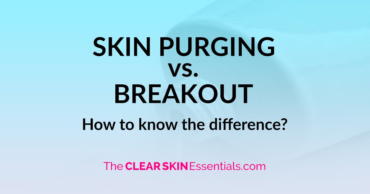 Skin Purging vs  Breakout (How To Tell The Difference) - The CLEAR